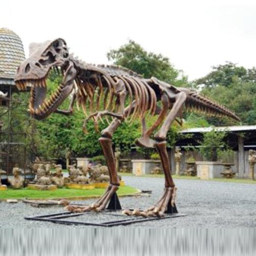 Squelette-de-T-Rex dinosaure resine nlc déco nlcdeco animaux prehistorique