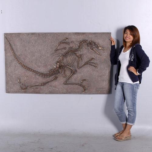 Tableau squeletteVélociraptor NLC DECO