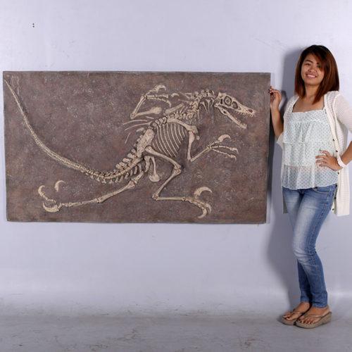 Tableau squelette Vélociraptor NLC DECO
