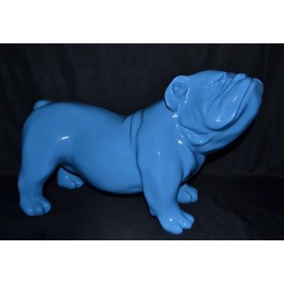 Bouledogue anglais bleu ciel