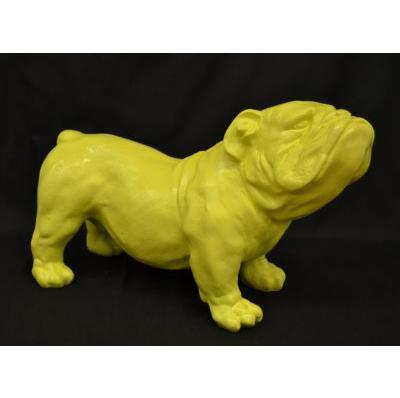 Bouledogue anglais jaune