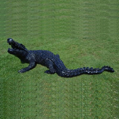 Crocodile-noir nlcdeco