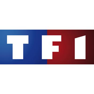 tf1-animaux-resine
