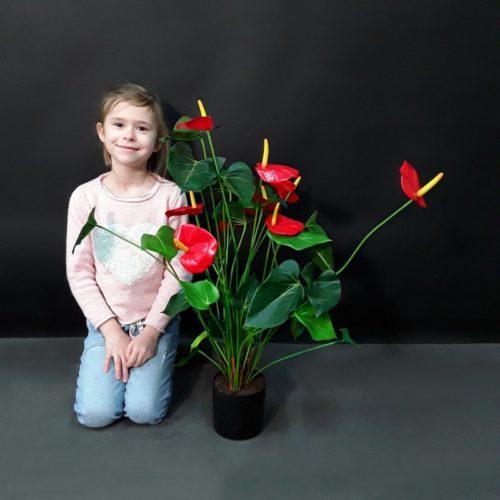 anthurium artificiel pépinière nlcdeco