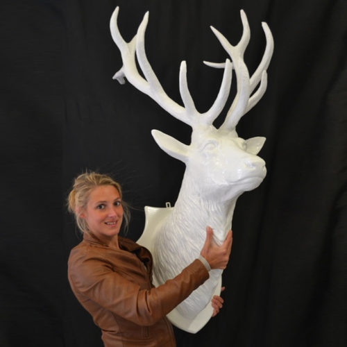Trophée-cerf-blanc nlcdeco