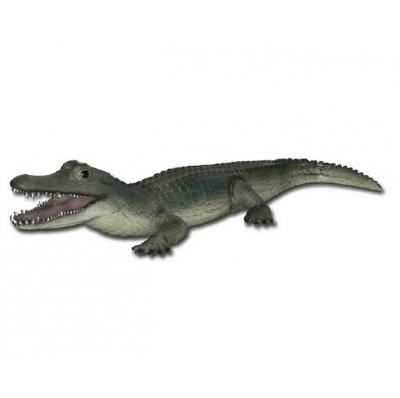 Alligator résine