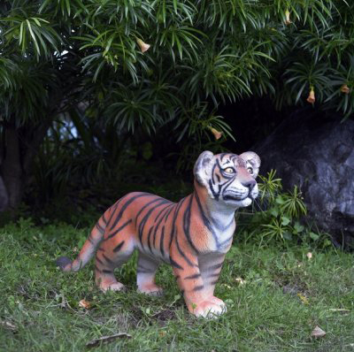 Bébé tigre debout