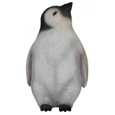 Bébé pingouin tête en l'air