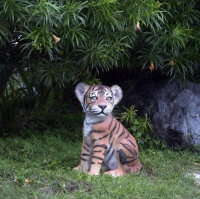 Bébé tigre assis
