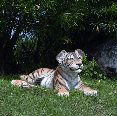 Bébé tigre couché