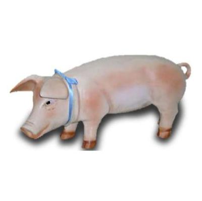 Cochon M