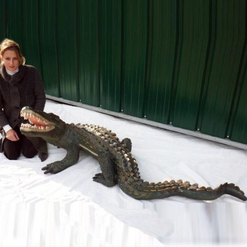 Crocodile nlcdeco