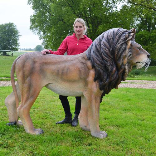 Lion 110101 nlcdeco