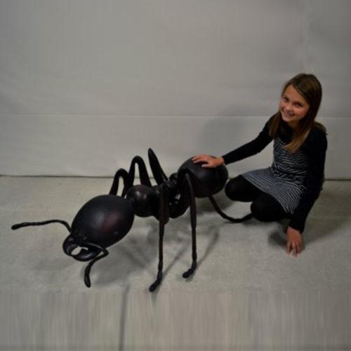 Fourmi noire géante 120046 nlcdeco nlc deco
