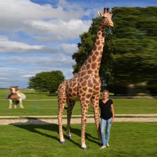 Girafe 3.60 m NLC DECO