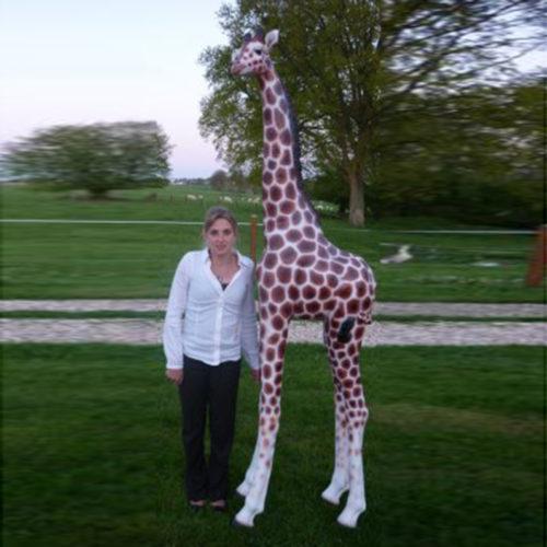 Girafe NLC DECO