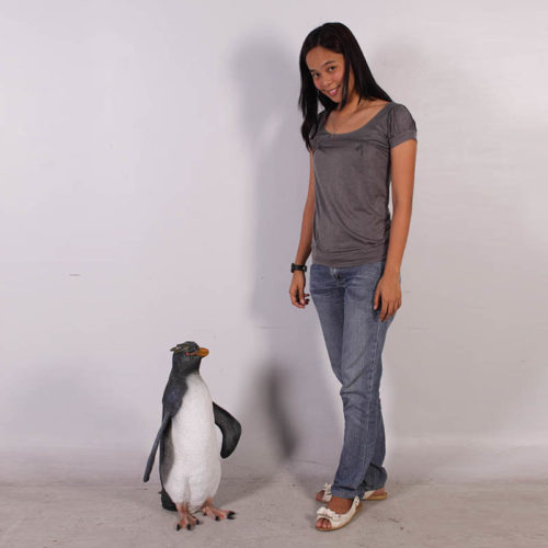 Gorfou sauteur Pingouin nlc deco