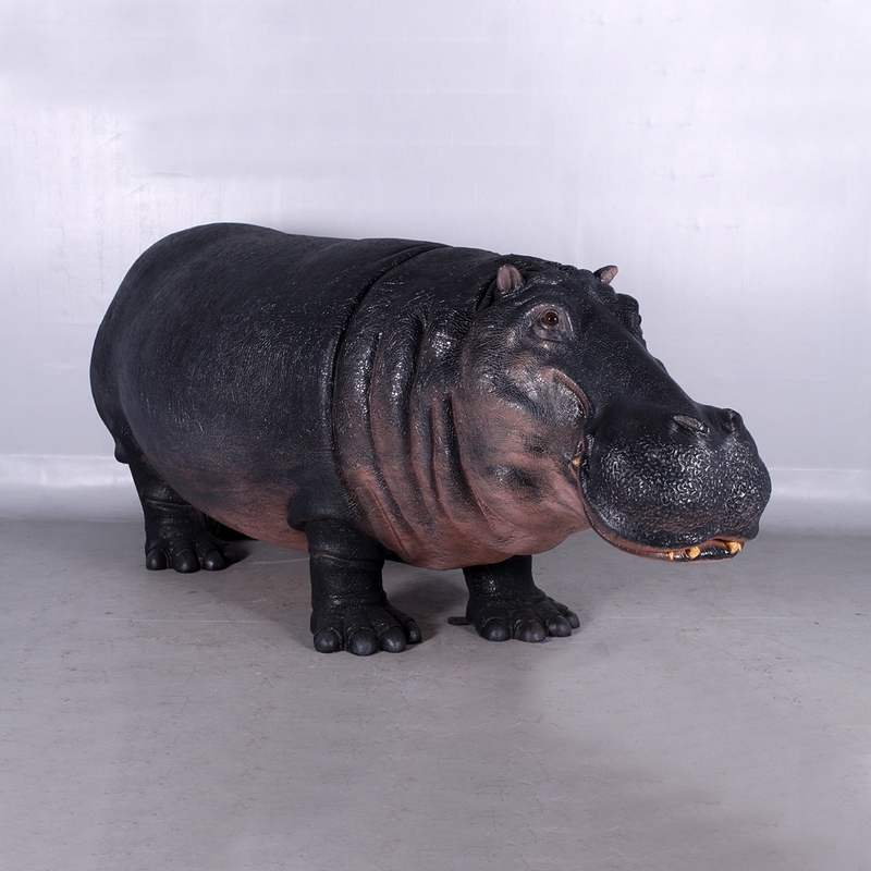 Hippopotame parc animalier nlcdeco
