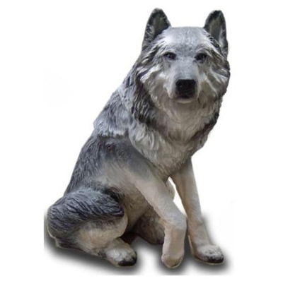 Loup assis
