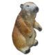 Marmotte marron