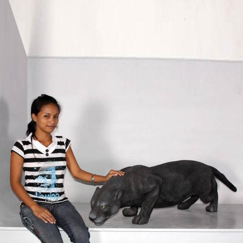 Panthère noire ! NLC DECO