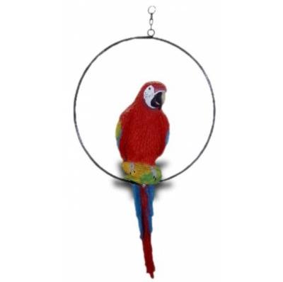 Perroquet sur anneau rouge