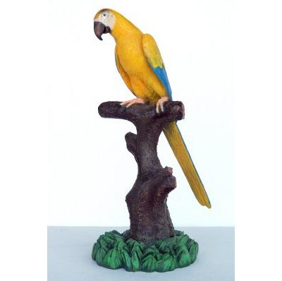 Perroquet sur perchoir jaune