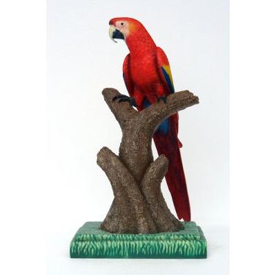 Perroquet sur perchoir rouge
