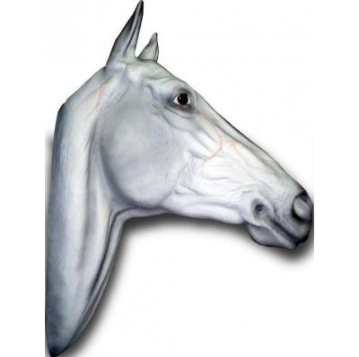 Trophée Cheval blanc