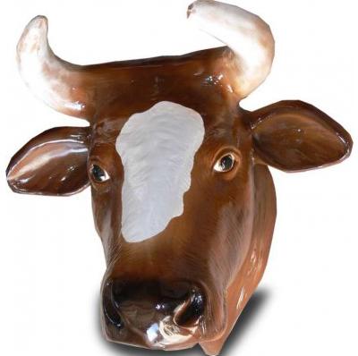 Trophée de Vache marron