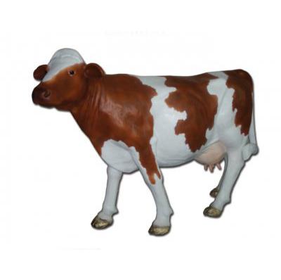 Vache sans cornes marron