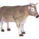 Vache grise sur pattes
