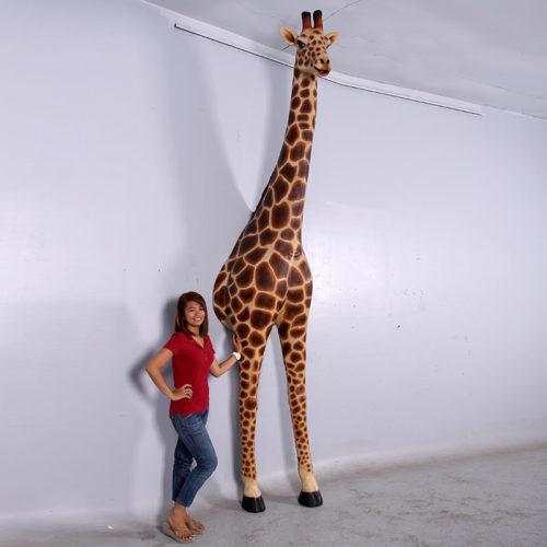 girafe 140119 nlcdeco nlc deco