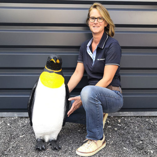 pingouin nlcdeco animaux be resine (2)