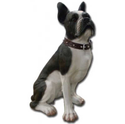 Bouledogue assis collier