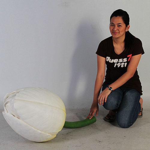 Bouton tulipe blanc NLC DECO
