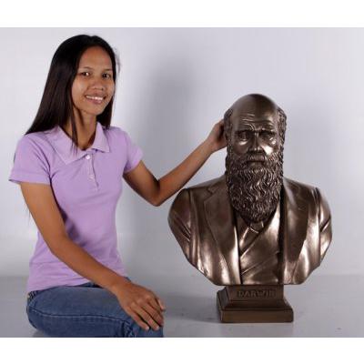 Buste Darwin finition bronze