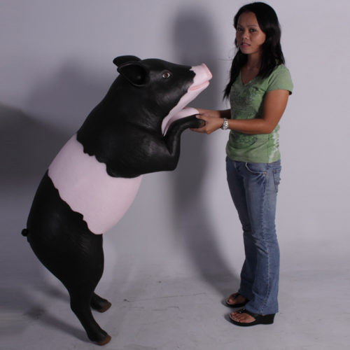 Cochon curieux noir rose NLC DECO