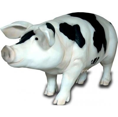 Cochon GM noir/blanc