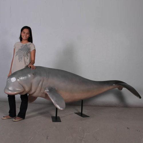 Dugong 100128 nlc deco