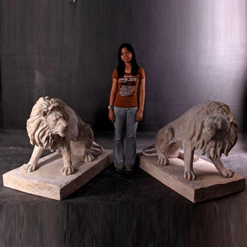 Grands lions NLC DECO