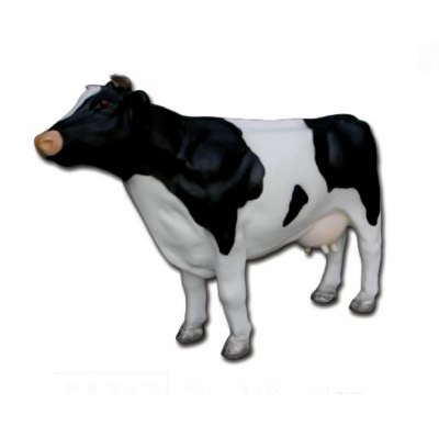 Vache M
