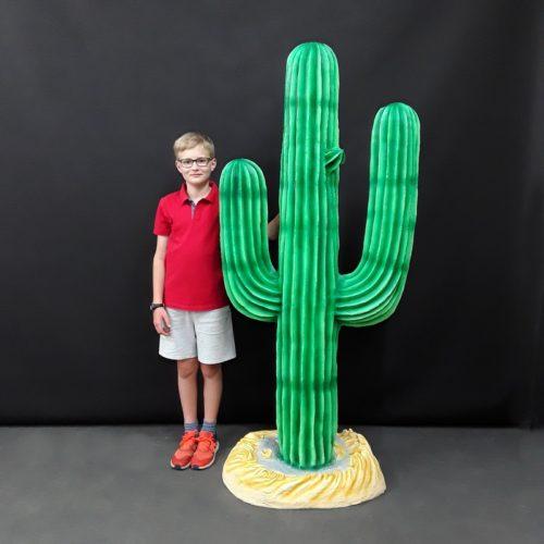 Grand-cactus-plante-grasse-nlcdeco-.jpg