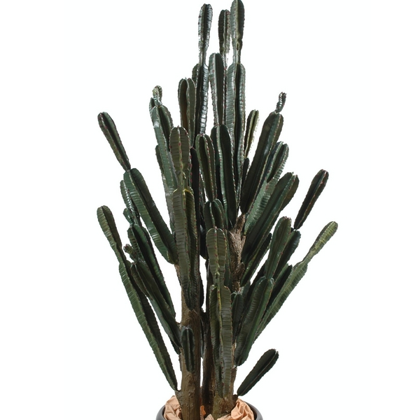 cactus artificiel m nlc deco d cors et animaux en r sine. Black Bedroom Furniture Sets. Home Design Ideas