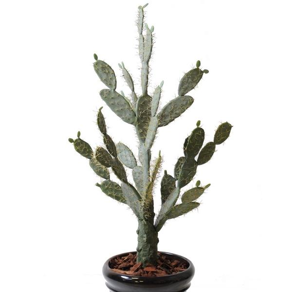 cactus de barbarie nlc deco d cors et animaux en r sine. Black Bedroom Furniture Sets. Home Design Ideas