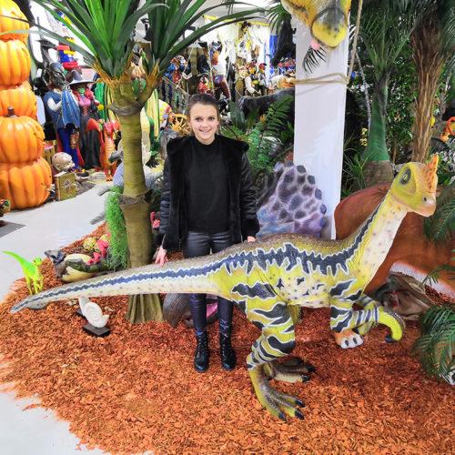 Dilong Paradoxus nlc deco déco resine dinosaure animaux préhistoire