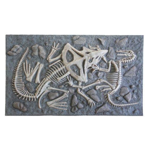 décor bassin de fouille dinosaure