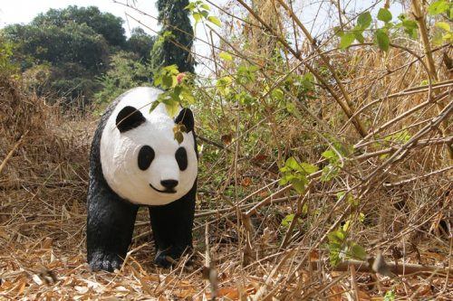 reproduction animaux sauvage en résine