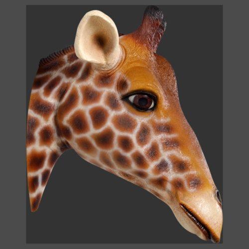 trophée girafe grandeur nature