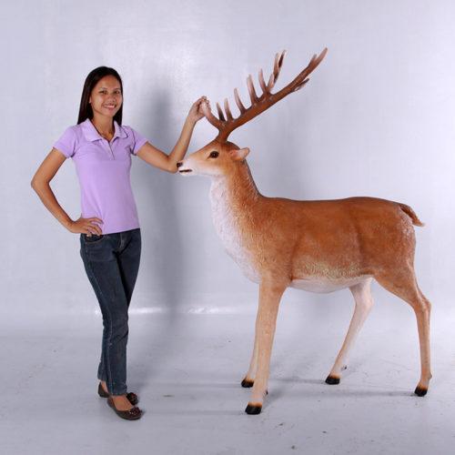 Renne naturel 169 cm